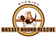 Wyoming Basset Hound Rescue In Cody, Wyoming Needs Your Help!